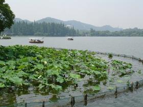 西湖 (杭州市)の画像 p1_5